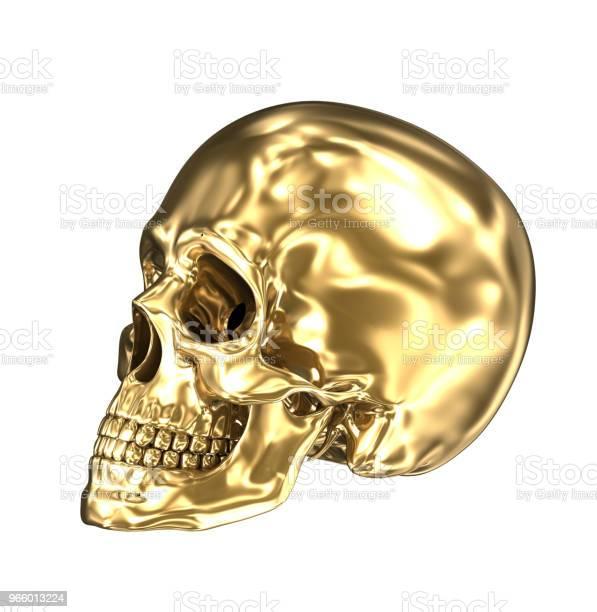 Golden Human Skull Over White 3d Illustration - Fotografias de stock e mais imagens de Adulto