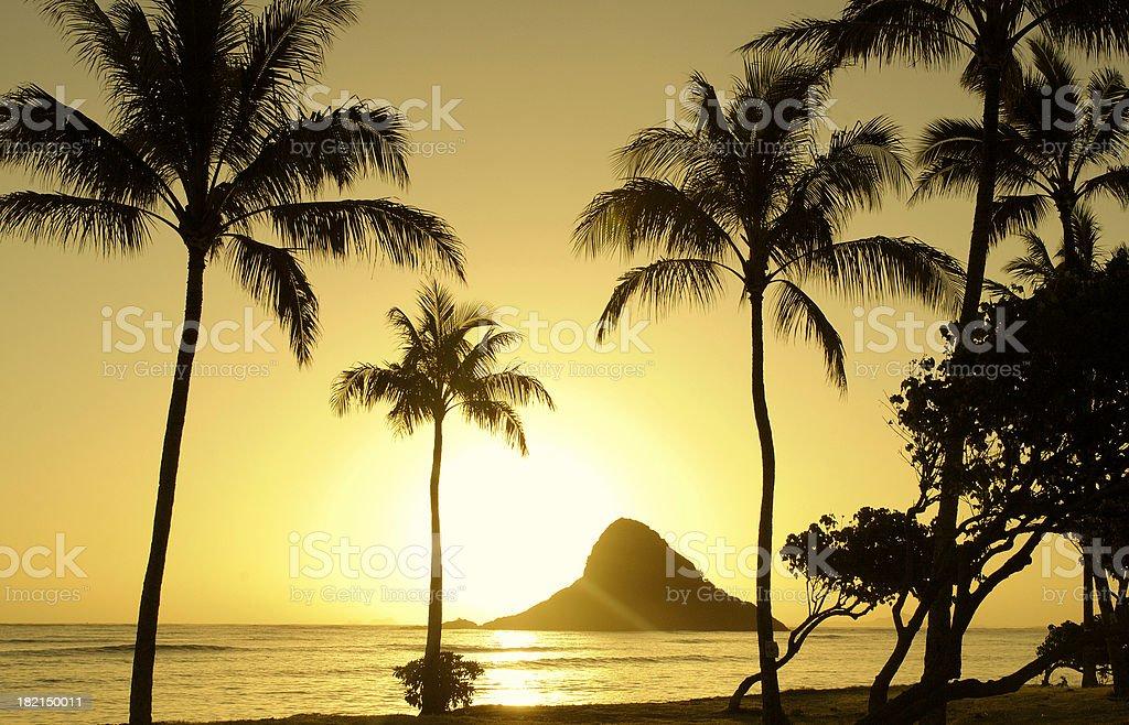 Golden Island Sunrise stock photo