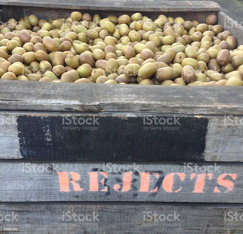 Golden kiwifruit rejects in a wooden crate stock photo