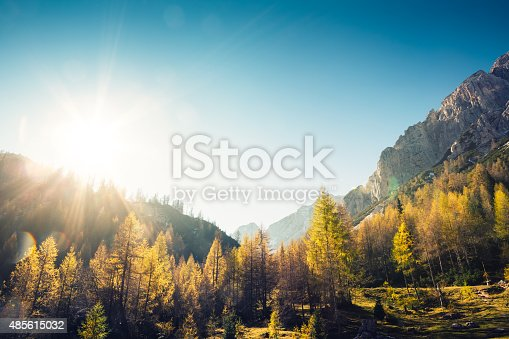 View on the mountains with colorful larch trees in autumn colours in the foreground (Alps, Slovenia, Europe).