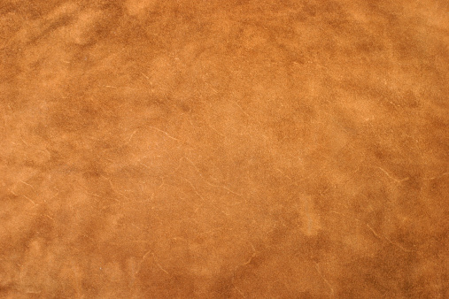 A detailed image of a large piece of leather.