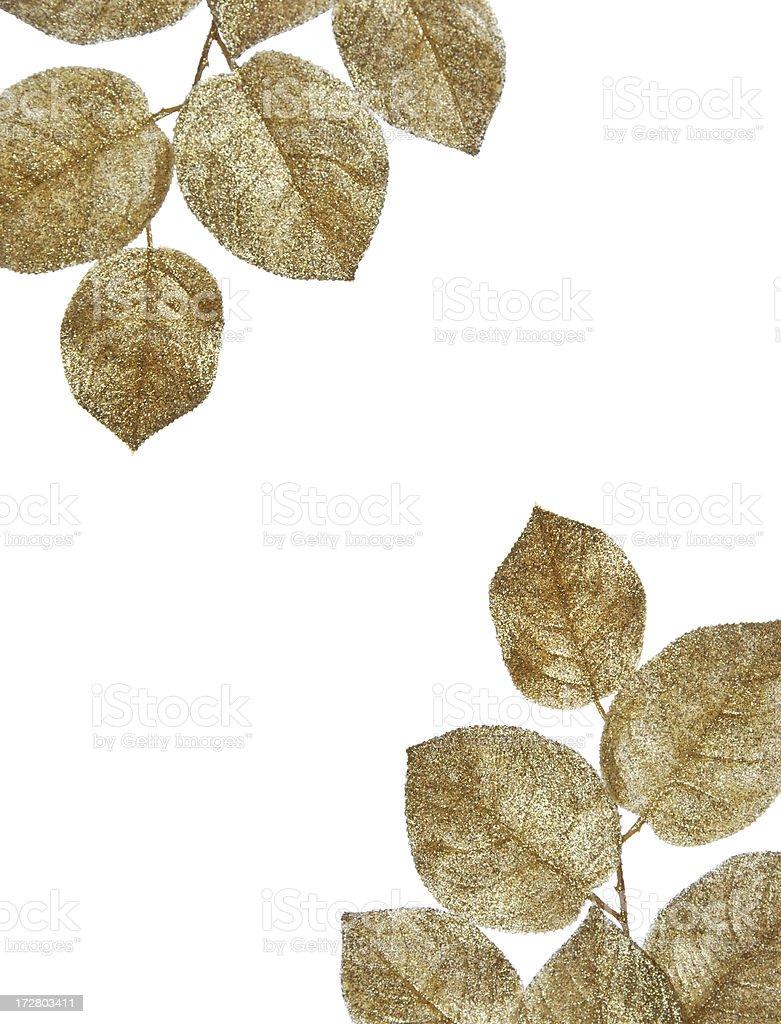 Goldene Blätter Grenze (XXL – Foto