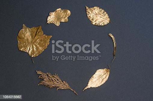 Golden leaves on a dark background.