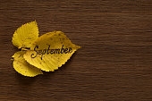 Golden leaves with the inscription SEPTEMBER on the dark wooden background.