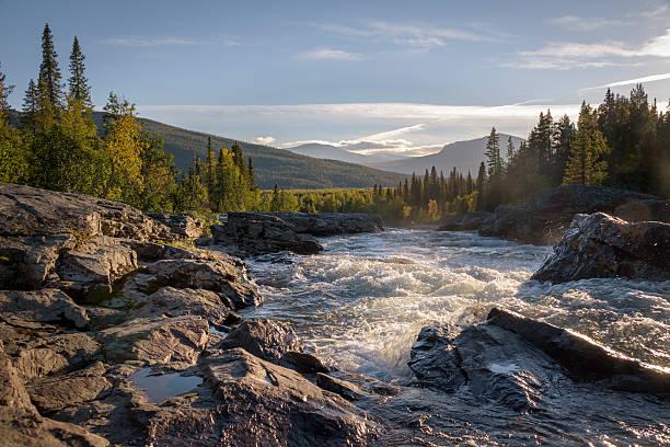 golden light shining on wild river flowing down beautiful landscape - norrbotten bildbanksfoton och bilder