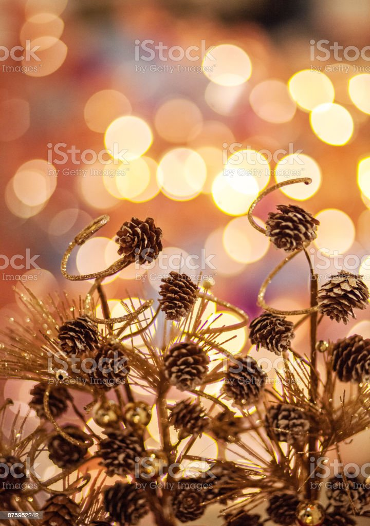 Golden Lights and Pine Cones stock photo