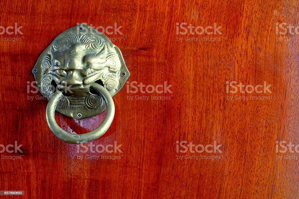 Golden lion on wood. stock photo