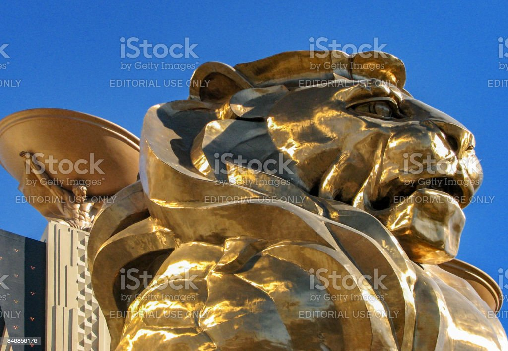 Golden Lion stock photo