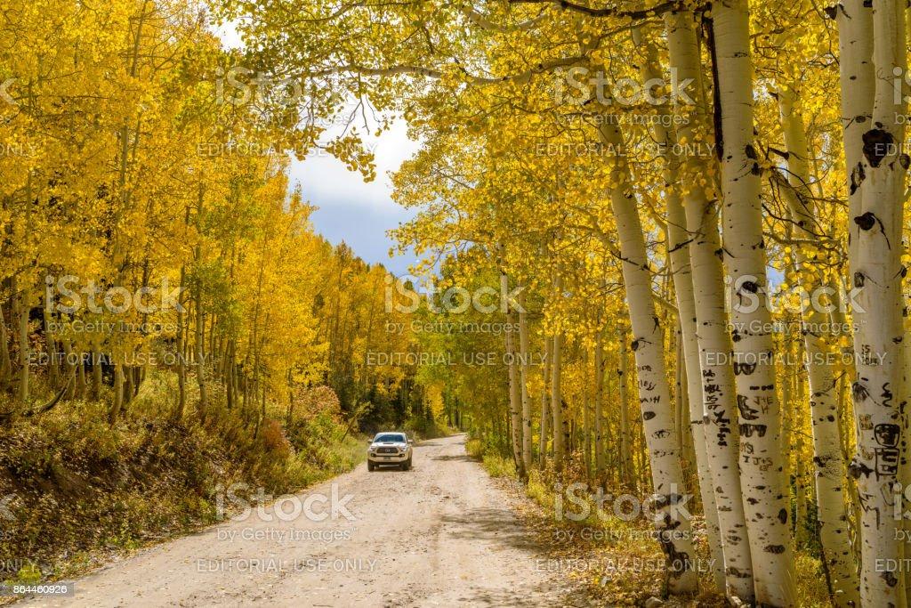 Golden Mountain Road in Aspen Grove stock photo