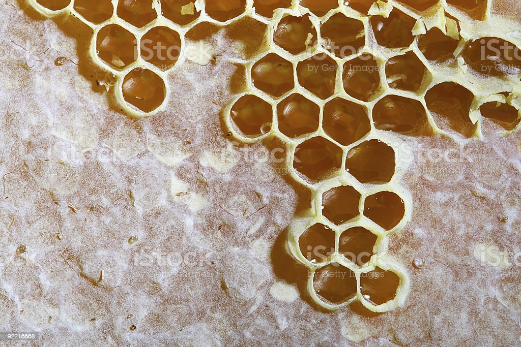 golden natural honeycomb close-up background royalty-free stock photo