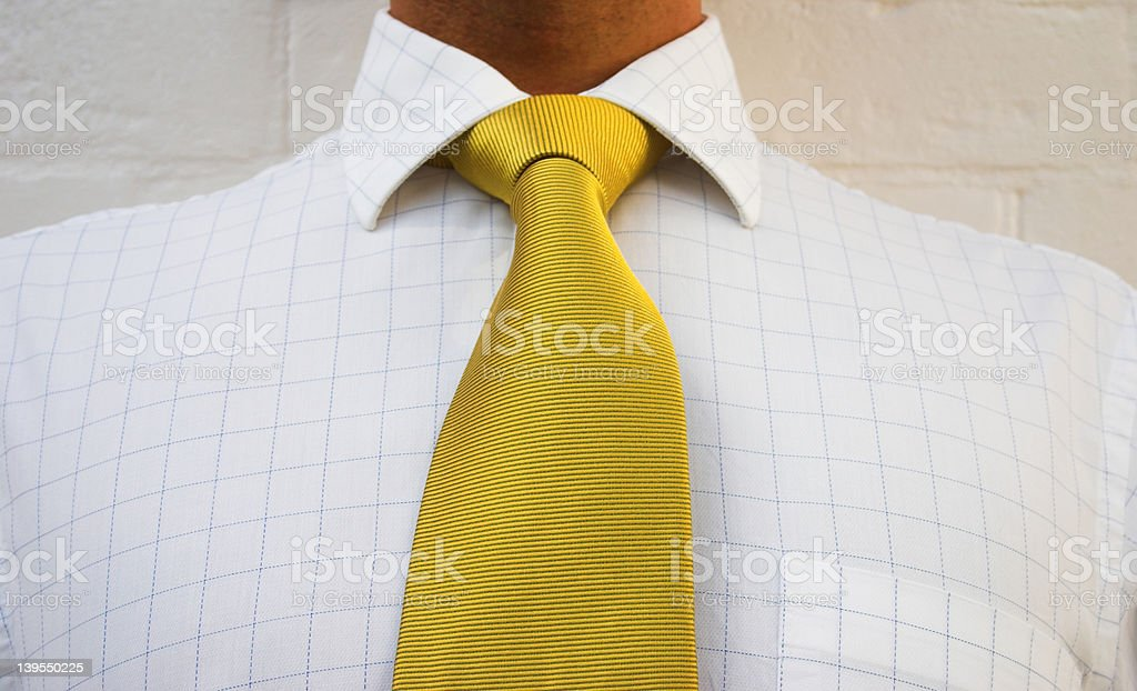 Golden neck wear royalty-free stock photo