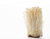 Golden needle mushroom in