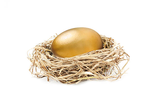 golden nest egg isolated on white  nest egg stock pictures, royalty-free photos & images