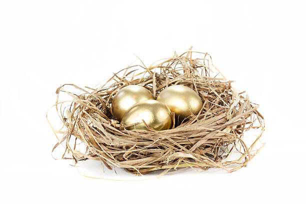 golden nest egg gold nest eggs isolated on a white background nest egg stock pictures, royalty-free photos & images
