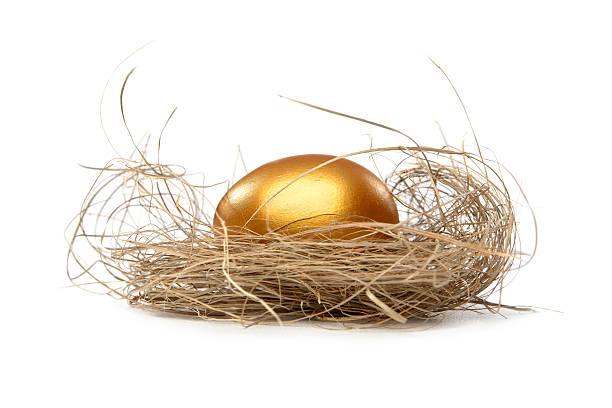 Golden nest egg Golden egg in nest. White background nest egg stock pictures, royalty-free photos & images