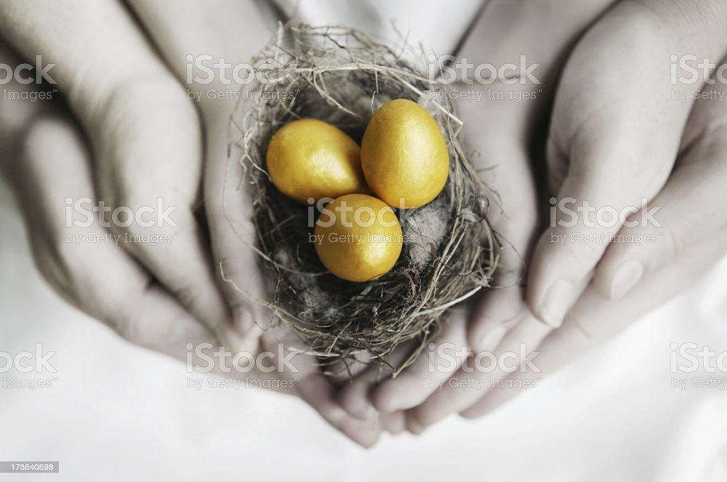Golden Nest Eggs stock photo