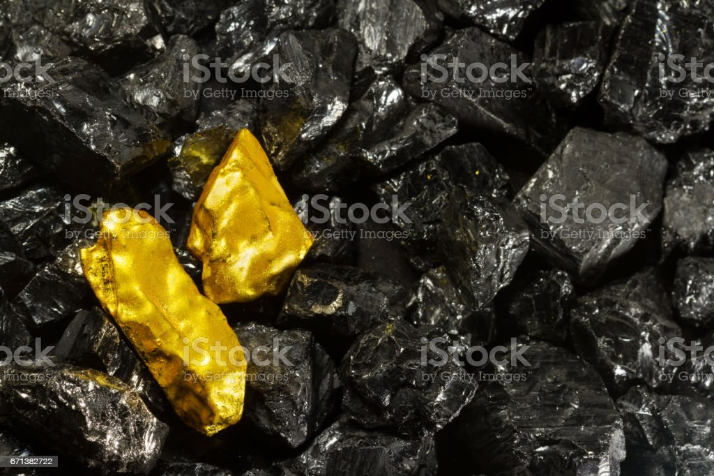 Golden nugget on raw coal nuggets, black gold, natural gold stock photo