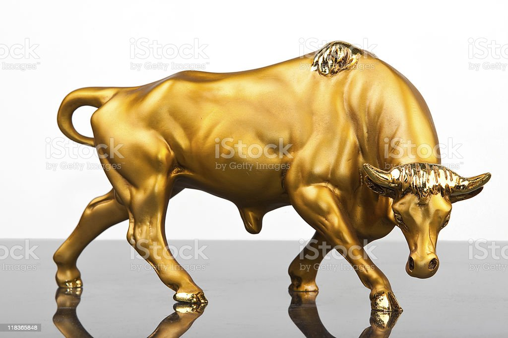 golden parget bull royalty-free stock photo