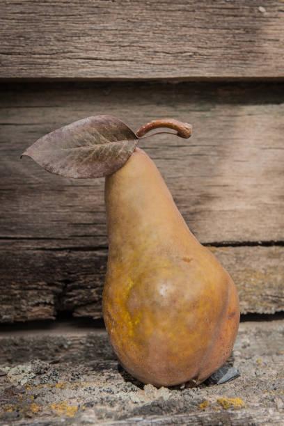 golden pear stock photo