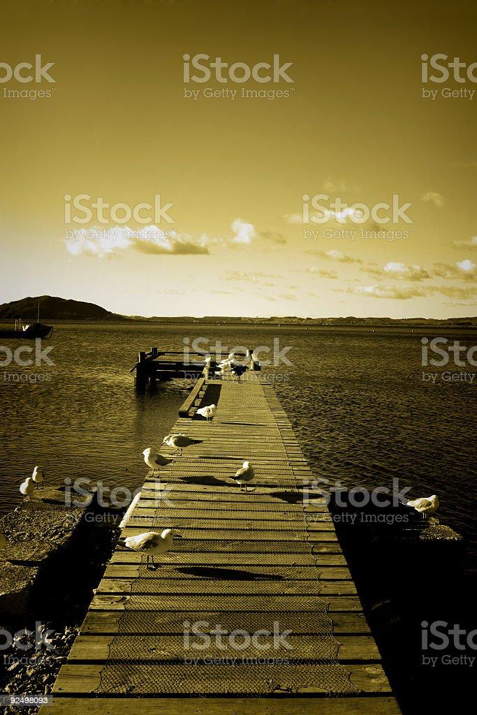 Golden Pier + Seagulls royalty-free stock photo