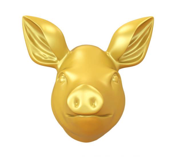 Golden pig isolated picture id1125566766?b=1&k=6&m=1125566766&s=612x612&w=0&h=pnlsjh0qtmgudxfatl6mtaocw2dapkymbzhwl4sutv8=