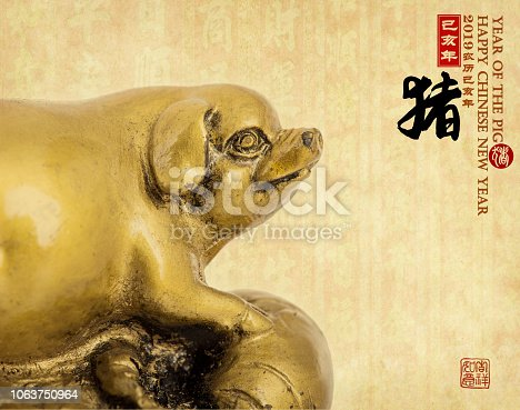 Gold piggy,Chinese calligraphy translation: pig.Red stamps translation: Chinese calendar for the year of pig 2019. calligraphy on pig mean good bless for money
