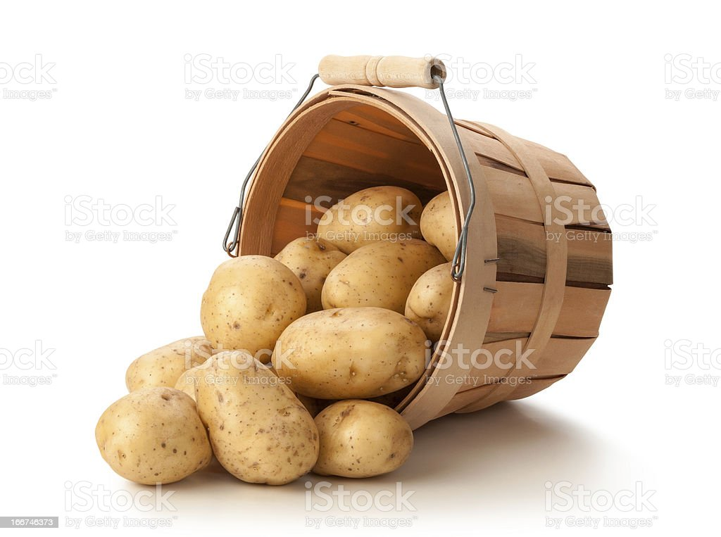 Golden Potatoes in a Basket royalty-free stock photo