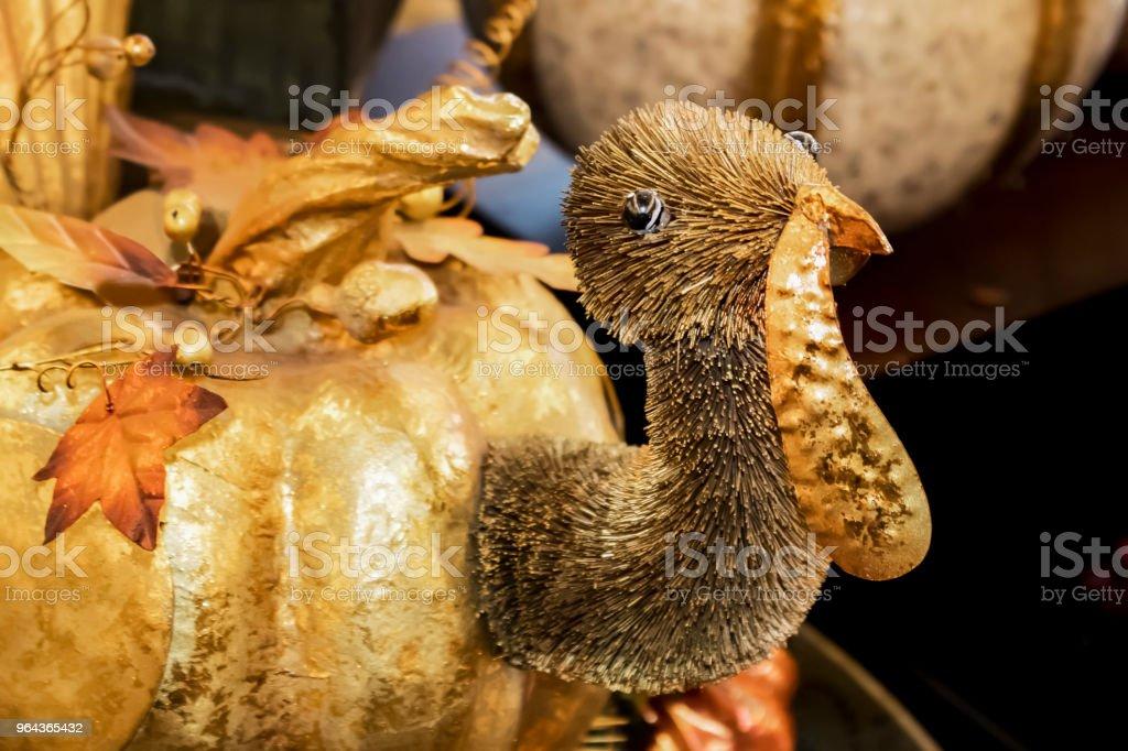 Decoração de Thanksgiving Turquia abóbora dourada - Foto de stock de Arranjo royalty-free