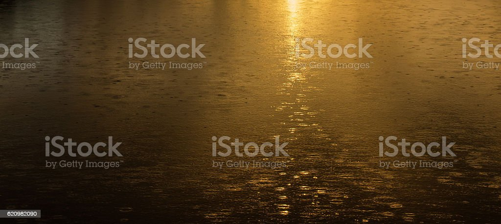 Golden rain, Rain drops falling as the sun rises. foto royalty-free