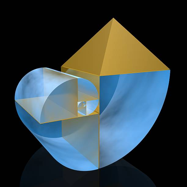 golden ratio - 黃金比例 個照片及圖片檔