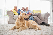 istock Golden Retriever with family at home 474509150