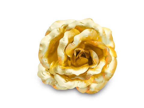 Golden rose on a white background.