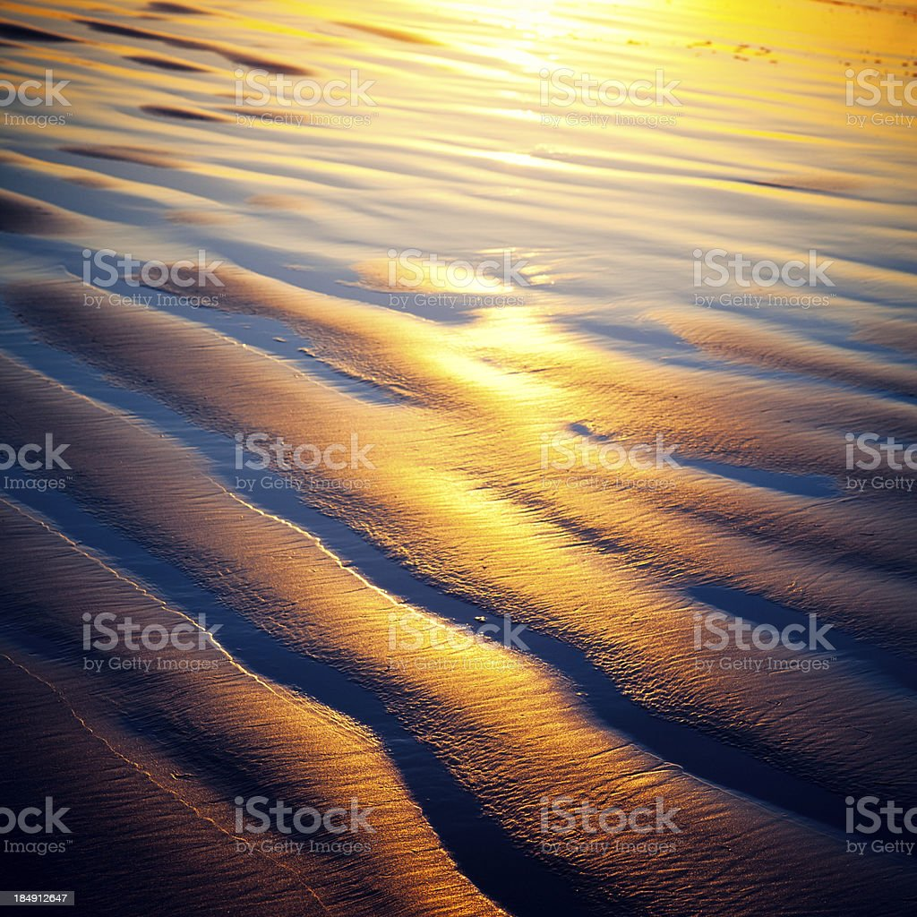 Golden Sand at Sunset on Oregon Coast royalty-free stock photo
