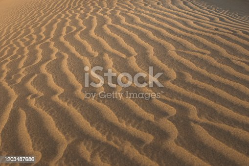 Sunlight on sand dunes of Death Valley National Park. Design background. Closeup of wind blown lines in the sand. Beautiful texture and wavy groove patterns.