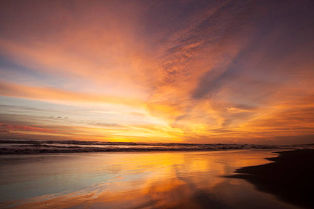 golden scenery of sunset at beach - twilight stock photos and pictures