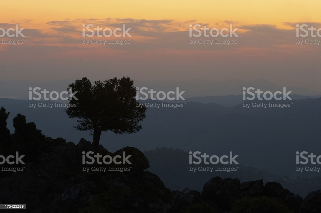 golden sky royalty-free stock photo