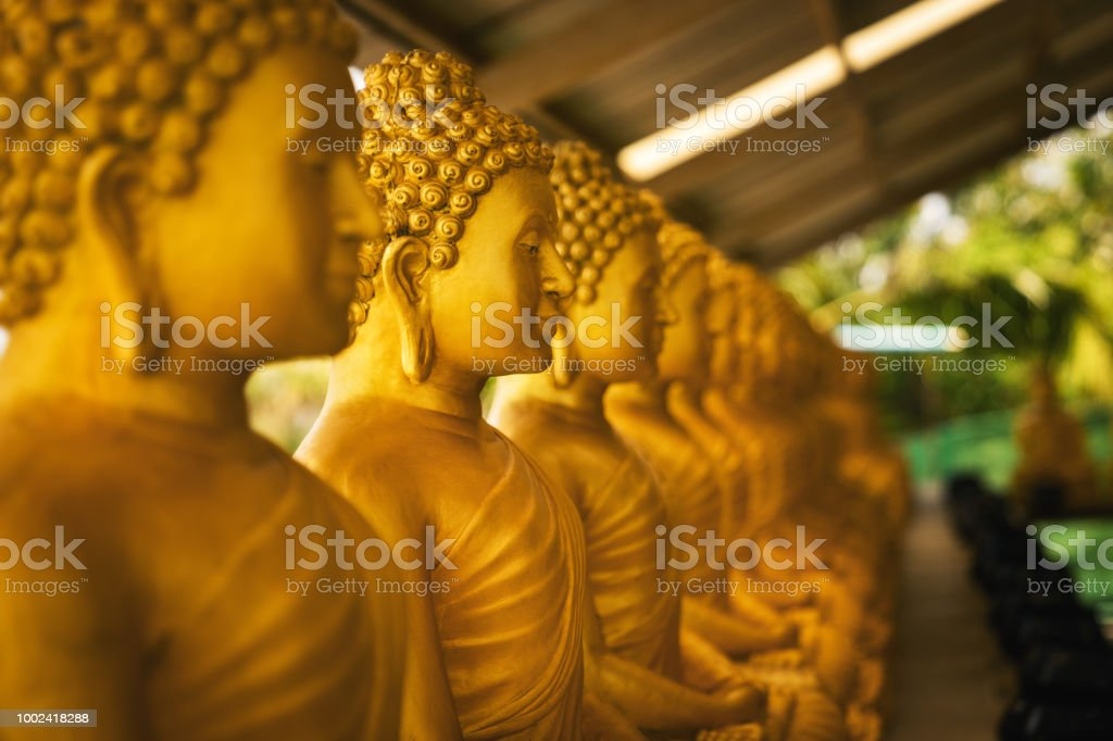 golden statues of buddhist monks in side profile in ancient temple building with copy space stock photo