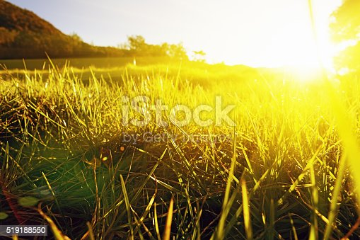 519188550istockphoto Golden sunlight pouring over green meadow 519188550
