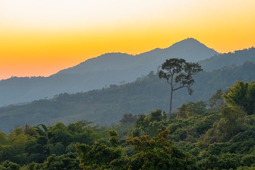 istock golden sunrise above the mountain range 1196505739