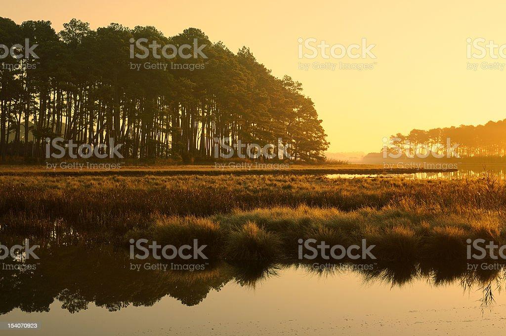 Golden Sunrise at Salt Marsh stock photo