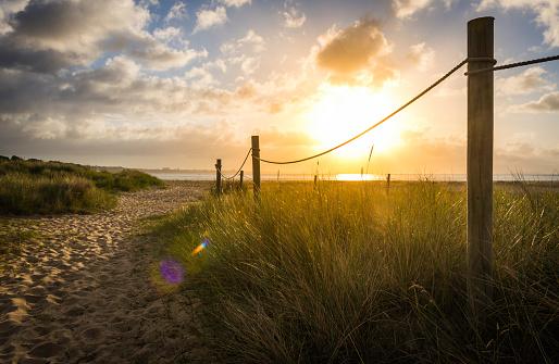 Golden sunrise illuminating sand dunes trail to summer ocean beach