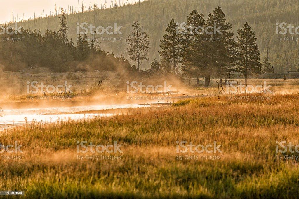 golden sunrise in Yellowstone river stock photo