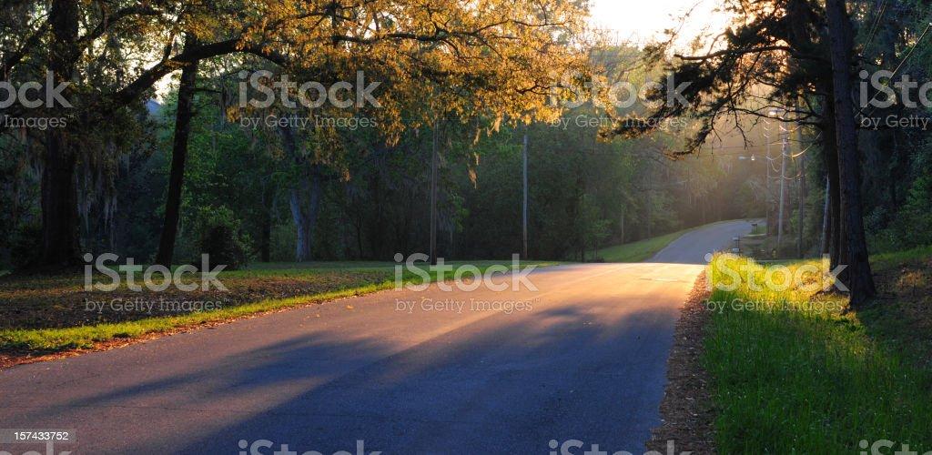 Golden Sunrise on a Suburban Street stock photo