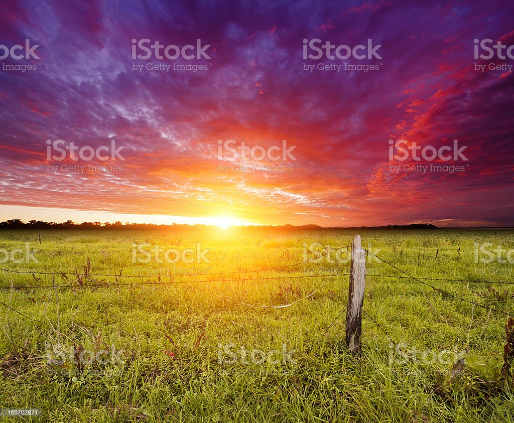 Golden Sunrise over farmland royalty-free stock photo