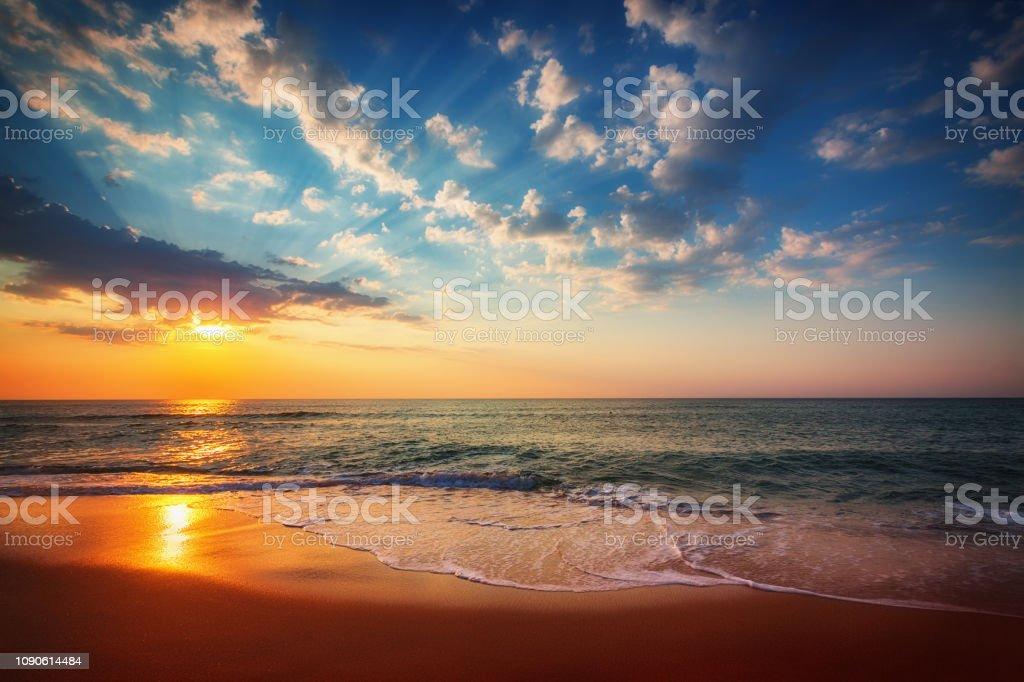 Tropikal plaj üzerinde altın gündoğumu - Royalty-free ABD Güney Kıyısı Eyaletleri Stok görsel