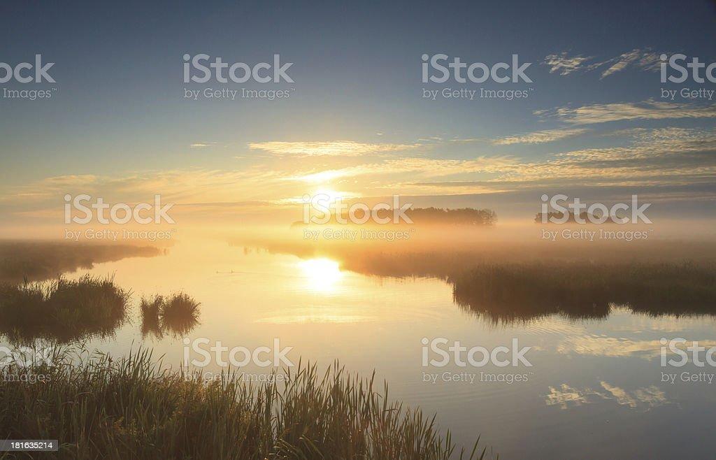Golden sunrise royalty-free stock photo