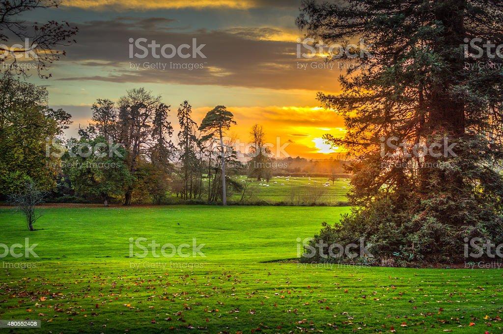 Golden sunset en la campiña de warwickshire - foto de stock