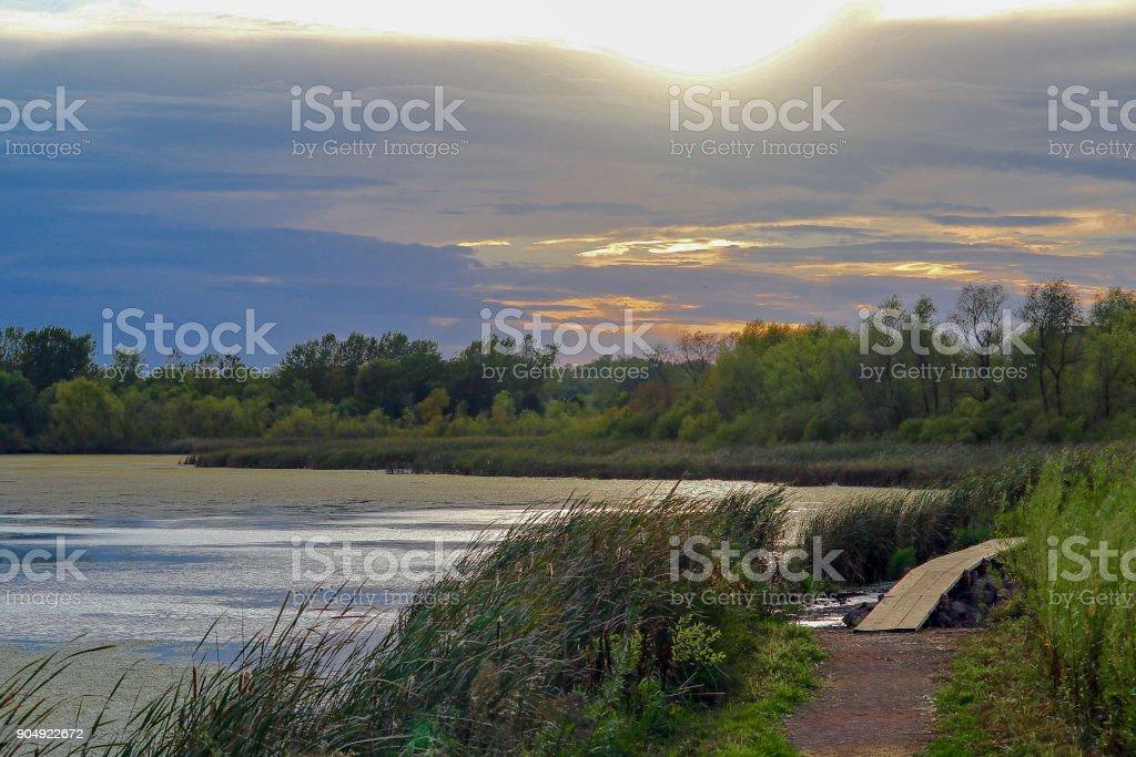 Golden sunset over a parkland lake stock photo