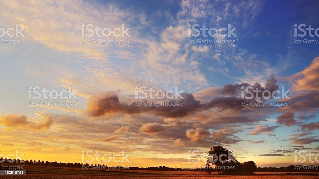 Golden sunset over field royalty-free stock photo