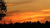 a vivid orange sunset